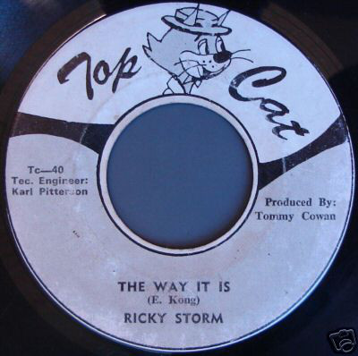 Ricky Storm ‎– The Way It Is